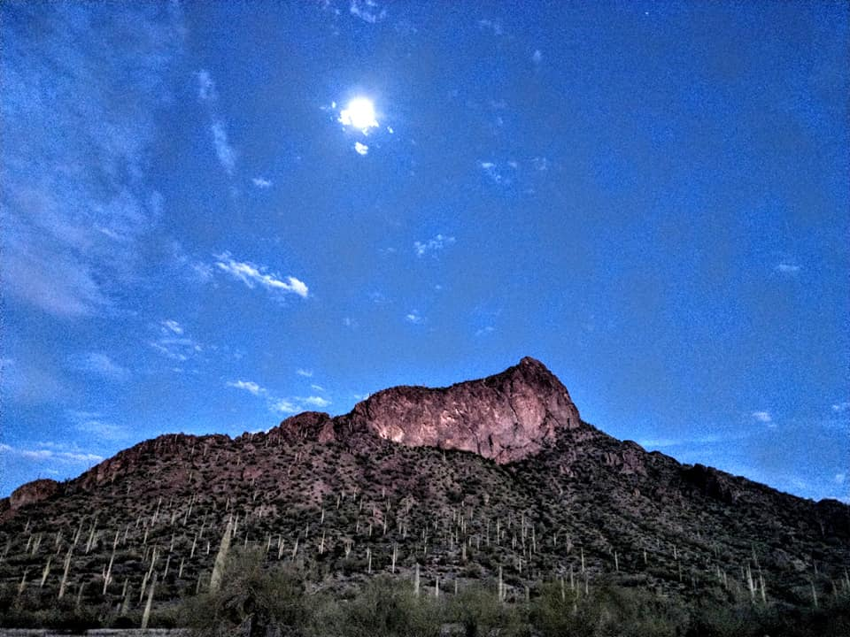 2020_03_06_SJ_USA_Arizona_Picacho_Peak_8.jpg